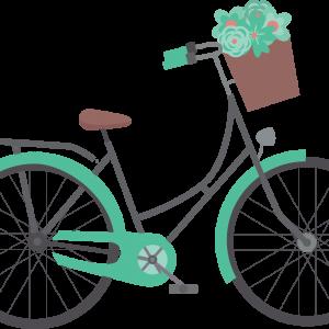 Auto si biciclete